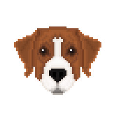Portrait of a australian pinscher in pixel art vector