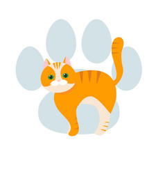 red striped cat flat cartoon vector image