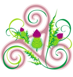 Thistle and Celtic triad vector image