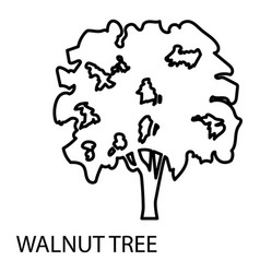 Walnut tree icon outline style vector