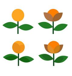 flower icon design on white background vector image