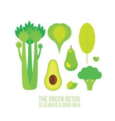 healthy green food celery spinach broccoli kiwi vector image