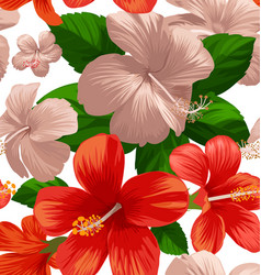 hibicus flowers pattern 1 vector image
