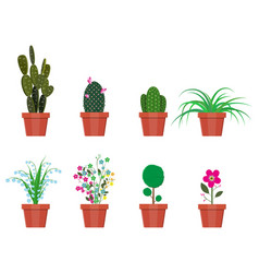 Various plants in flower pot vector