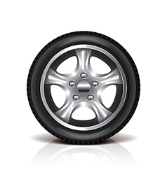 object tire vector image