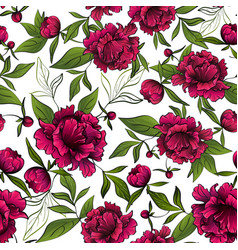 pattern with red peony flowers and green leaves vector image