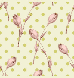 pink rose buds seamless pattern over polka dot vector image