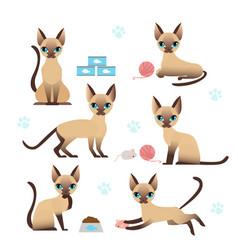 set cute kitten in various vector image