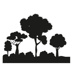 silhouette tree different nature foliage vector image
