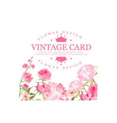 Vintage card with blooming pink flowers vector