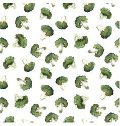 Watercolor broccoli pattern vector