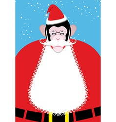 Monkey Santa Claus Monkey with beard and mustache vector image