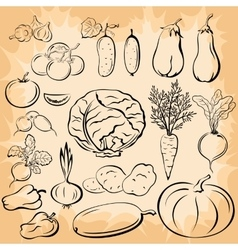 Vegetables Pictograms Set vector image vector image