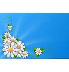 White flowers on blue background vector image