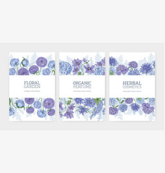 collection floral card or flyer templates vector image