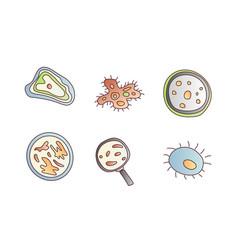 scientic research cartoon icon molecules vector image