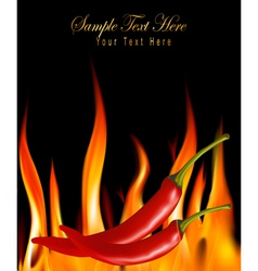 hot chili peppers in fire vector image vector image