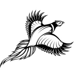 a stylish monochrome flying vector image vector image