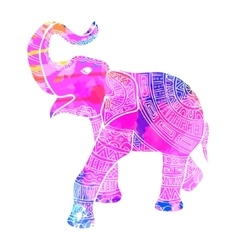 Greeting Beautiful card with Elephant Frame of vector image
