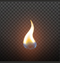 realistic candlelight fire element design vector image