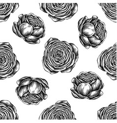 seamless pattern with black and white ranunculus vector image