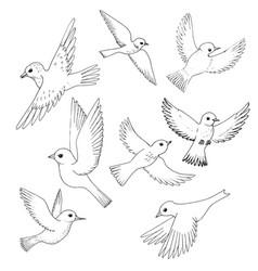 Set flying birds vector