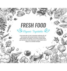 sketch vegetables organic vegetable foods poster vector image