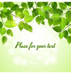 Spring green leaves background vector