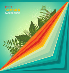 colorful of summer tone background color vector image