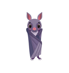 cute purple bat wrapped in its wings funny vector image