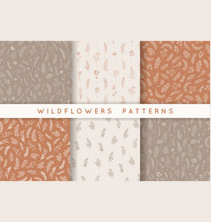 set seamless patterns with leaves herbs vector image