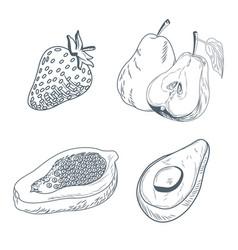 strawberry pear papaya and avocado hand draw vector image vector image