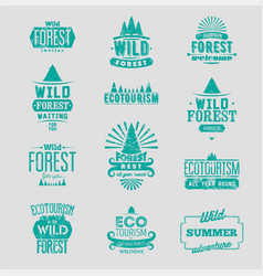 Wild forest and ecotourism labels grunge set vector