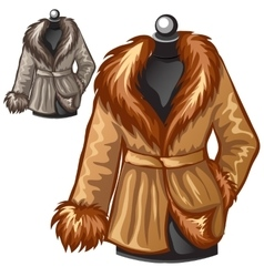 Womens brown winter coat with fur collar vector image