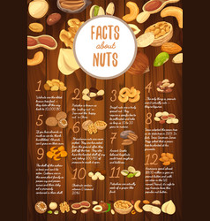facts about nuts on wooden board with kernel vector image