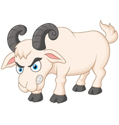 Angry cartoon goat vector image