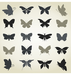 Collection the butterfly vector image
