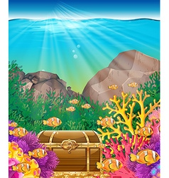 Fish and chest under the ocean vector