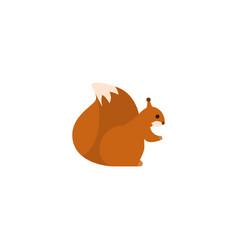 flat squirrel element of flat vector image