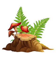 Red mushrooms and stump wood on white background vector