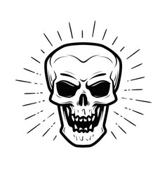 Scary human skull jolly roger halloween zombie vector