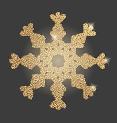 snowflake christmas symbol vector image