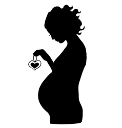 pregnant woman with hear in her hands vector image vector image