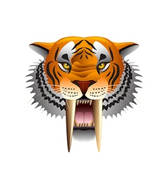 Saber-toothed tiger face isolated on white vector image vector image