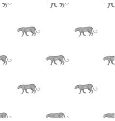 leopardafrican safari single icon in monochrome vector image