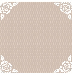 lace vintage background vector image vector image