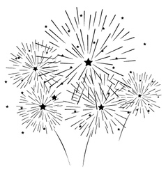 silhouette of fireworks vector image