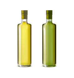 realistic detailed olive oil glass bottle set vector image