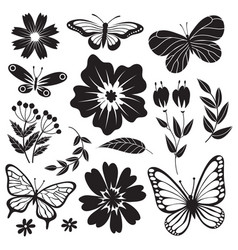 black and white butterflies and flowers hand vector image