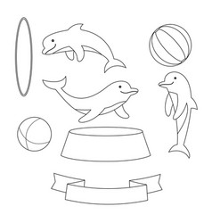 Dolphin with balls and hoop isolated on white vector